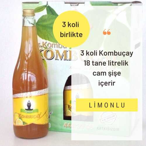 KOMBUÇAY - Kombuçay Limonlu 3 KOLİ