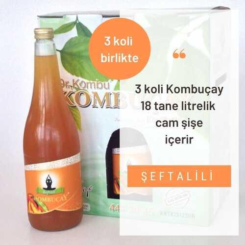 KOMBUÇAY - Kombuçay Şeftali 3 KOLİ